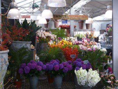 Amsterdam, il mercato dei fiori