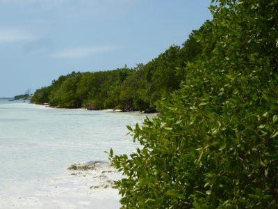 Una settimana a Miami: Keys, Anne's Beach ad Islamorada