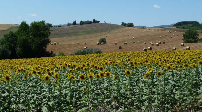Umbria, tour di 6 giorni in macchina: in viaggio