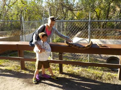 Florida a misura di bambino: Tamiami-Everglades-Coopertown